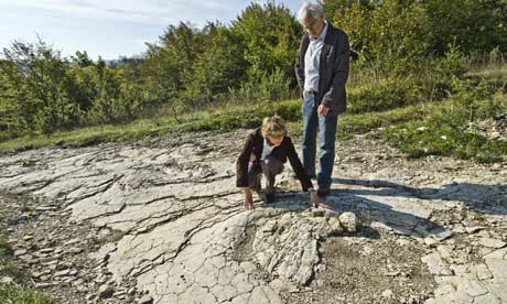 a sauropoda dinosaur footprint  discovered in Pagne, north of Lyon, France
