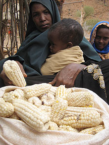 Observer Food : Plumpy'nut and food crisis in Kenya, Fatima shows her entire food store