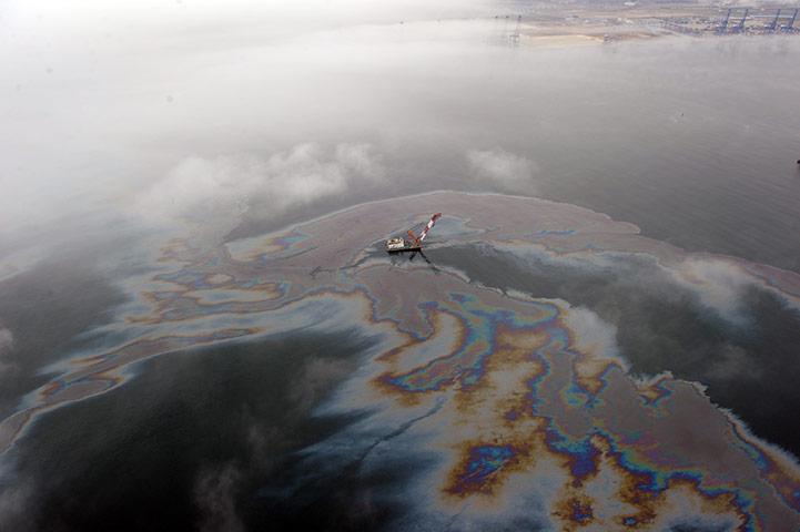 Dalian Oil Spill: leaked oil floating off the coast of Dalian, northeast China
