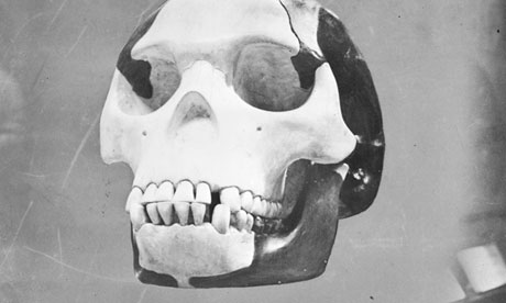 Skull of the famous hoax Piltdown Man