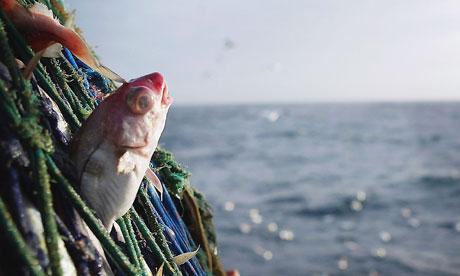 Scottish trawlermen