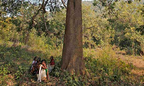 Women from the Dongria Kondh tribe sit under a tree at the foot of the Niyamgiri hills