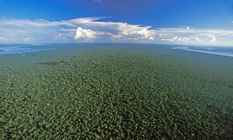 An aerial view of the Amazon rainforest near Nova Olinda, Brazil