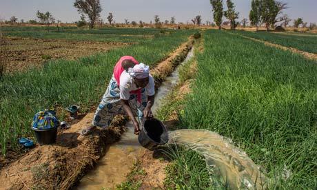 Mali conflict