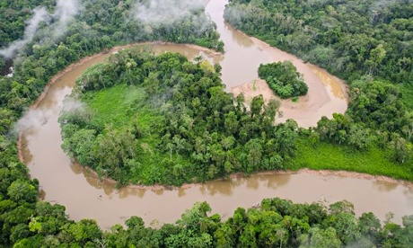 Tiputini River and rainforest, Yasuni National Park, Amazon, Ecuador,