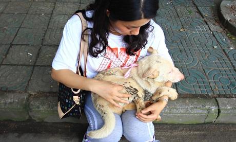 Activist and dog