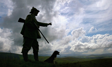 A gamekeeper on a Scottish moor: 'Golden plover numbers are being maintained on grouse moors while d