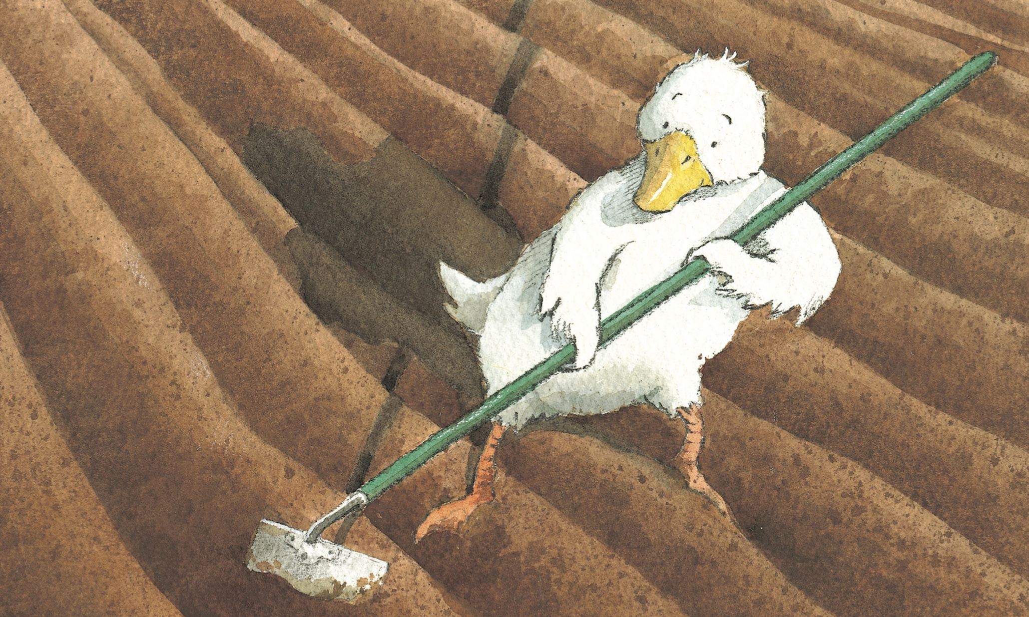 Which Are The Best Picture Books About Farms