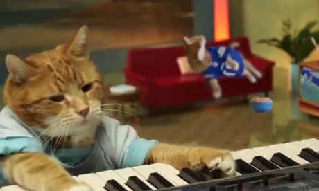 Keyboard Cat.