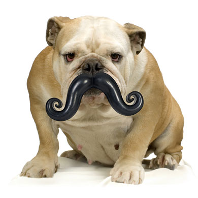 Worst Christmas gifts: Dog ball and moustache