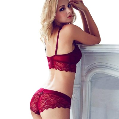 Women's Sexy Bra and Panties Intimates Set