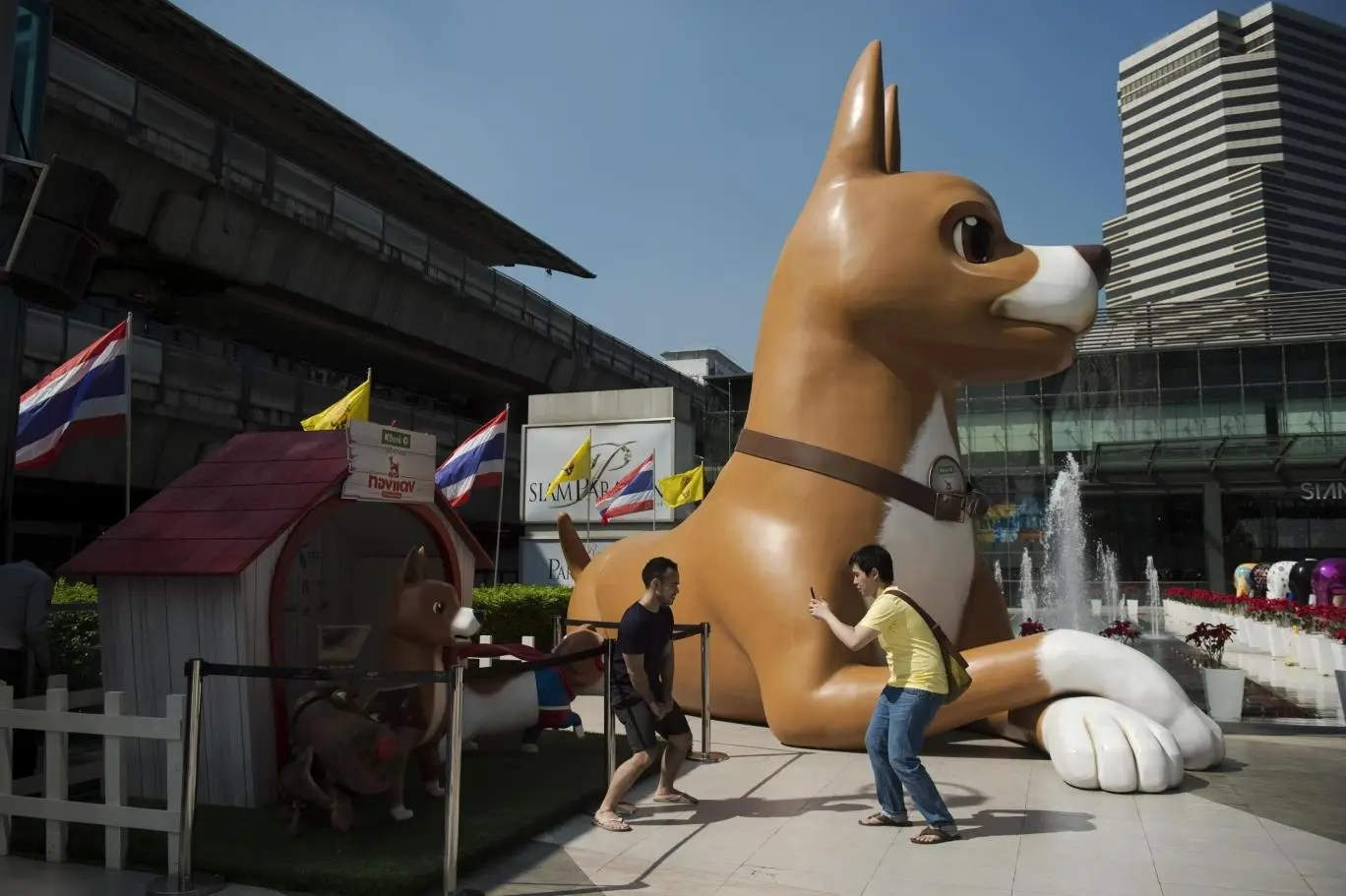 Men pose next to a 10-metre high dog statue, part of the promotional effort for a film based on Thai royal dog Tongdaeng's life. photo: NICOLAS ASFOURI/AFP/Getty Images