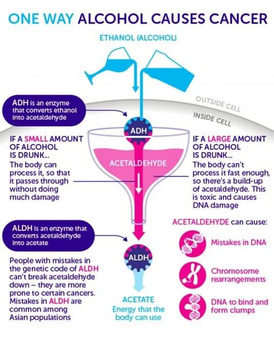 Como causa cáncer el alcohol
