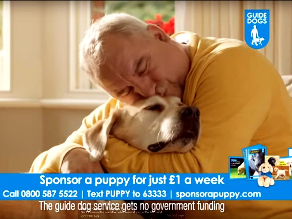 Guide Dogs For The Blind Association Has Radio Advert
