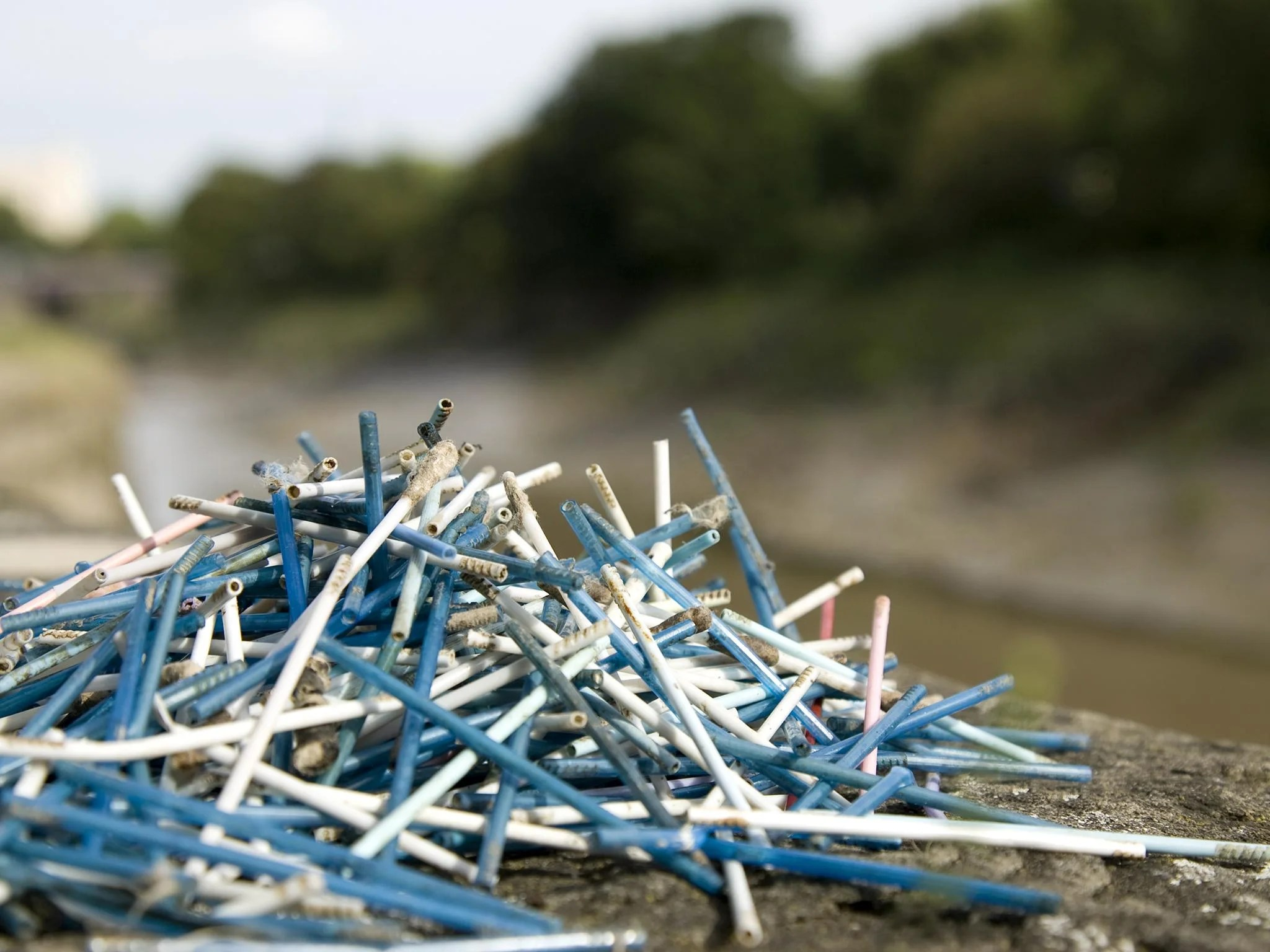 Johnson Amp Johnson Will Stop Selling Plastic Cotton Buds In Half The World To Help Cut Marine