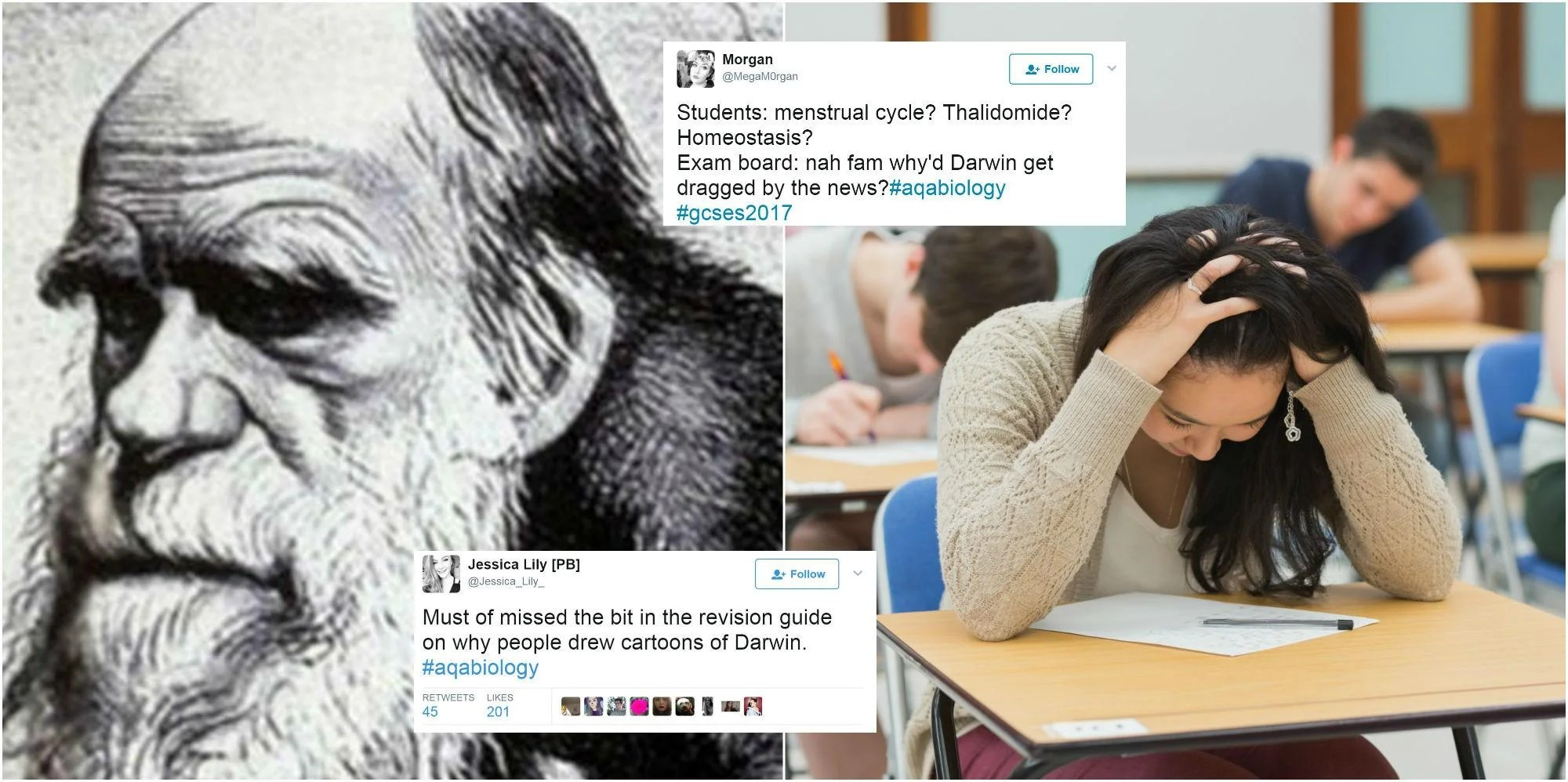 Students Taking Their Gcse Biology Exam Were Asked A Very