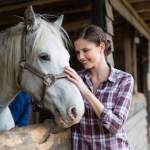 Horses Can Read Human Emotions Study Finds The Independent The Independent