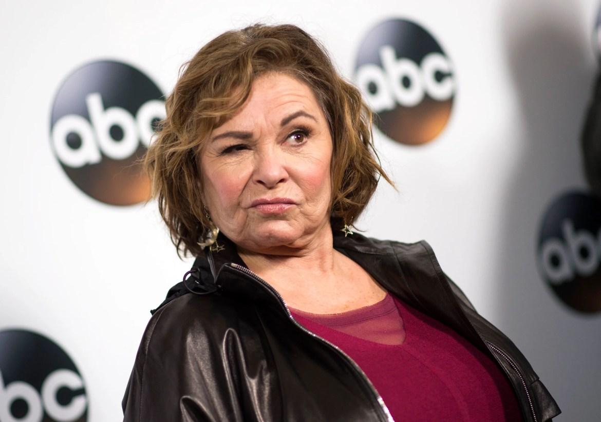 "Roseanne Barr is outraged by James Gunn's support: ""The same people have blacklisted me"""