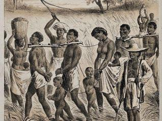 Details of horrific first voyages in transatlantic slave trade ...