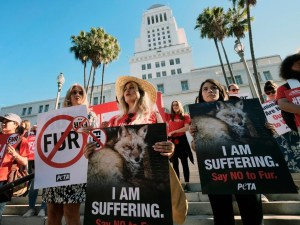 Los Angeles is banning the sale of animal fur