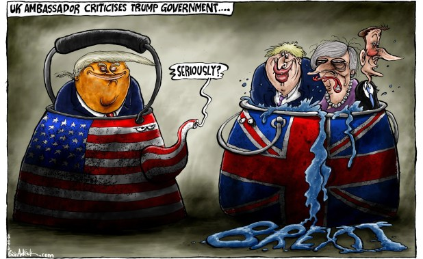 Image result for cartoon: britain ambassador
