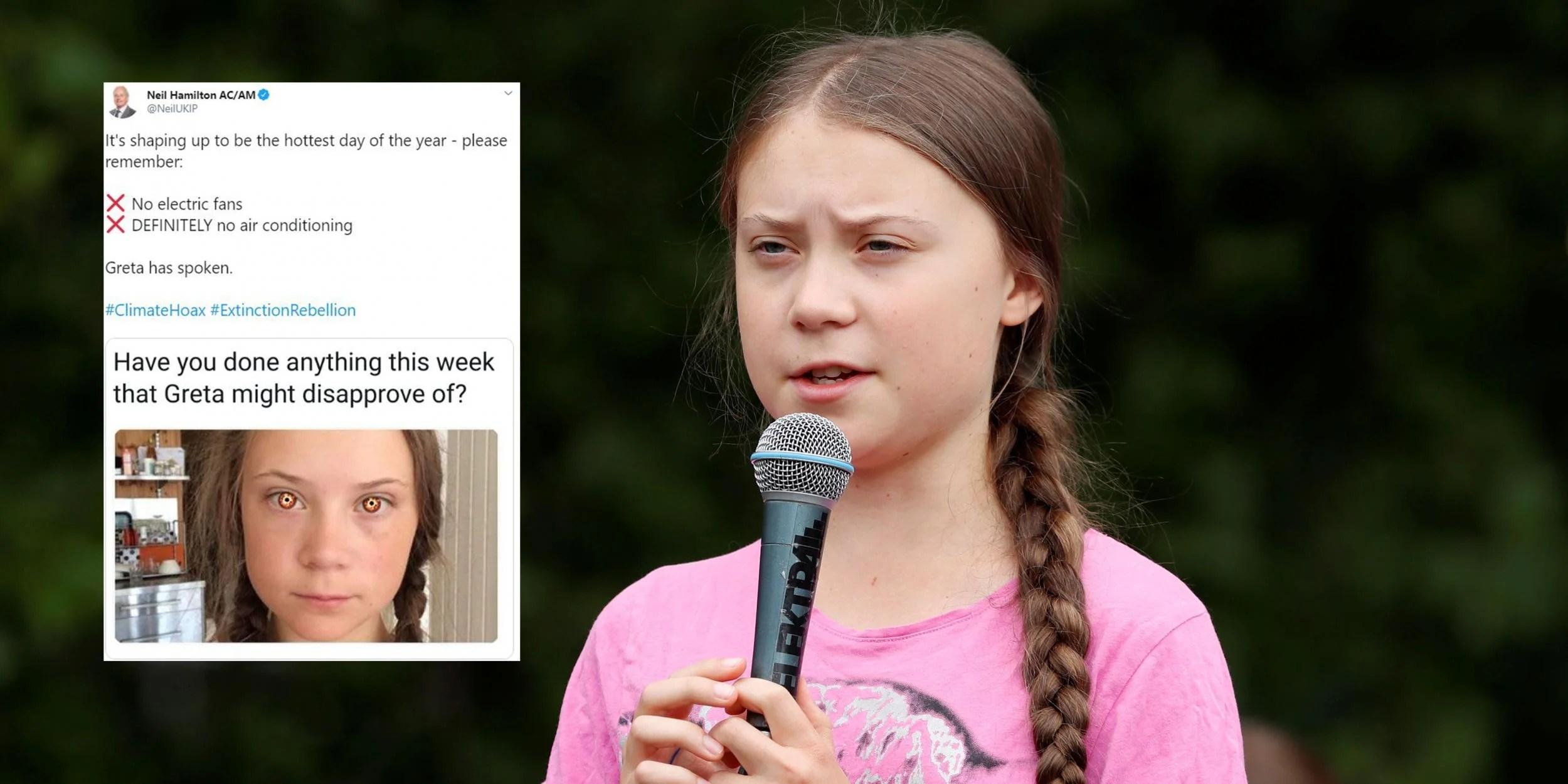 Ukip Wales Leader Condemned For Tweeting Meme Mocking Greta Thunberg