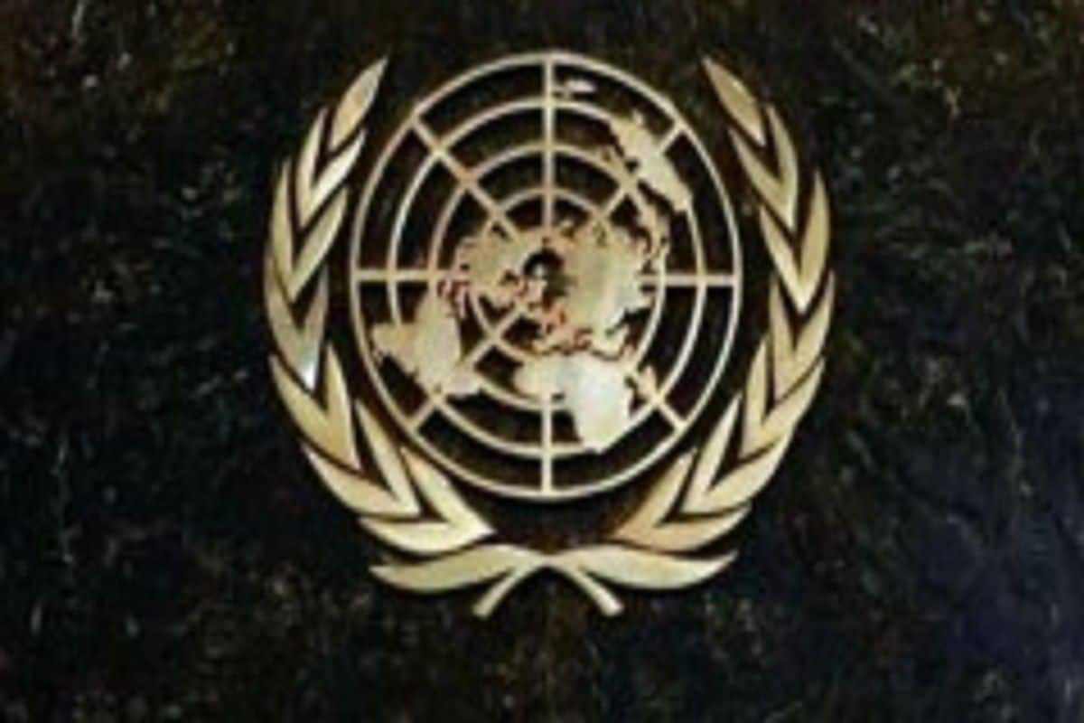 India 'Very Responsible' Player in Global Fora, Can Galvanise Action as UNSC Member: UN Official 11