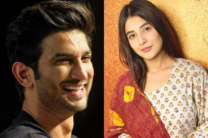Bigg Boss 13 Fame Shehnaaz Gill Reacts on Sushant Singh Rajput Death, Says 'I Was Hurt, Shocked And Disheartened' 2