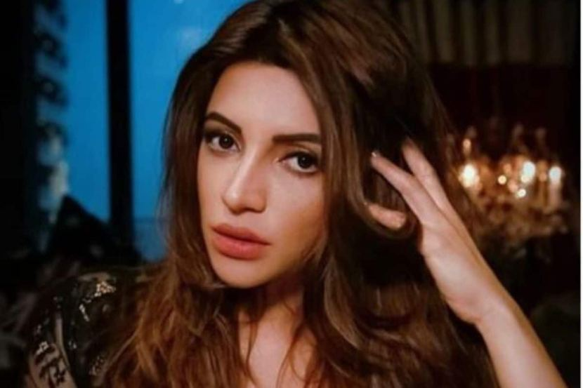 Shama Sikander Rubbishes Rumour of Going Under The Knife, Says 'It is My Life, I Can do Whatever I Want' 2