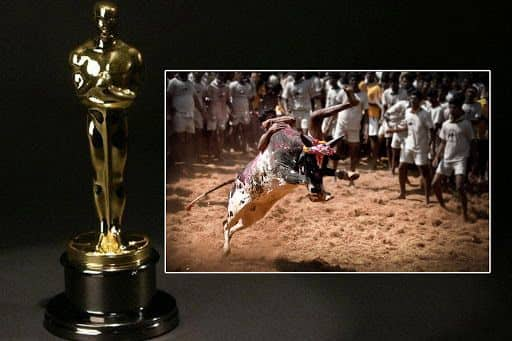 Oscars 2021: Malayalam Film Jallikattu Becomes India's Official Entry To 93rd Academy Awards