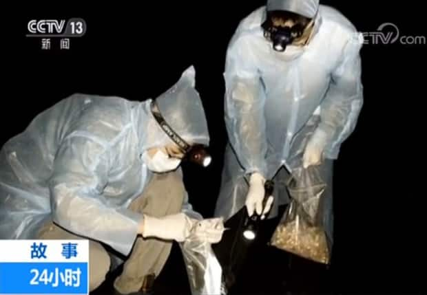 'We Were Bitten by Coronavirus Infected Bats': Wuhan Scientists Make Startling Revelation in a 2017 Video