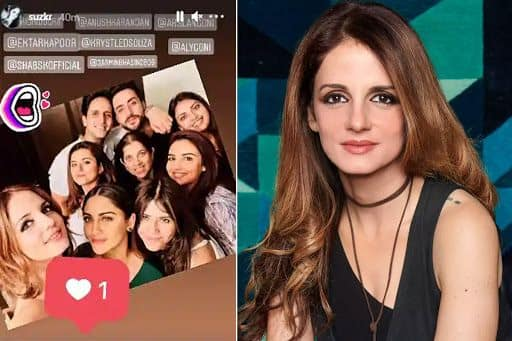 Sussanne Khan Parties With Aly Goni Brother Arslan Goni Amid Dating Rumours