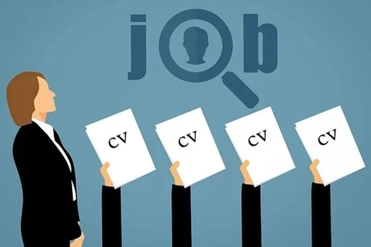 TCS HCL Infosys Wipro Jobs
