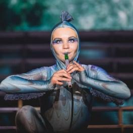 The Lord of the Dance la Sala Palatului din Bucuresti pe 6 otombrie 2015