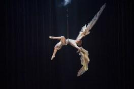 cirque-du-soleil-varekai-23733_re1_2830