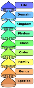Biological_classification
