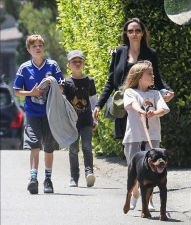 Kćerka Angeline Jolie fotografisana u dresu reprezentacije BiH