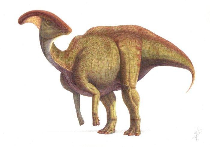 Примерно так выглядел гадрозавр. /Фото:dinohistory.ru