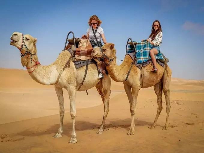 Camel Rides in Jaipur