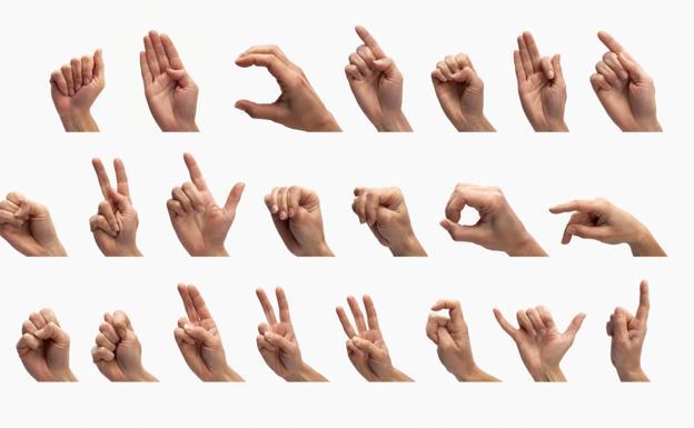 Resultado de imagen de lengua de signos