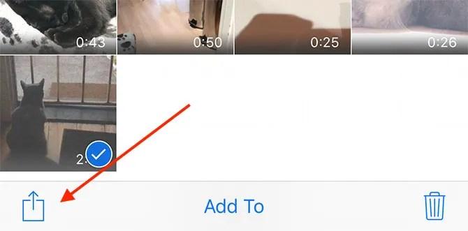 Значок обмена фотографиями iOS