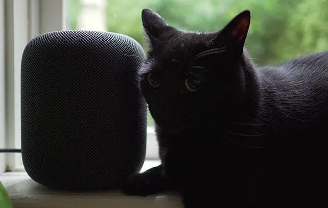HomePod con Black Cat