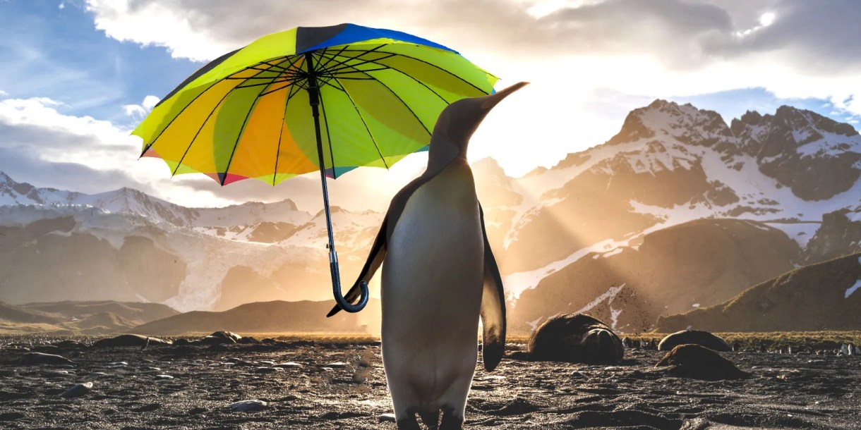 linux-weather