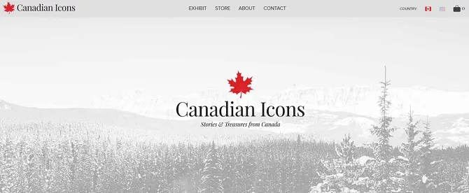 canada icons 670x276 - The 20 Best Shopify Stores to Try Instead of Amazon or eBay