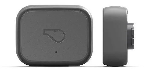whistle 3 e1531332517438 - The Best GPS Tracker for Dogs and Cats