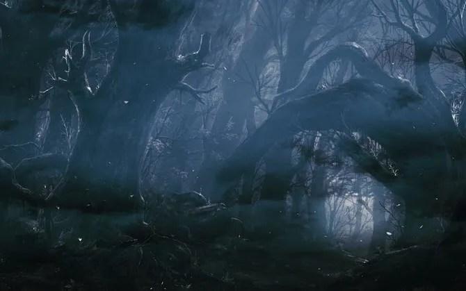 Sfondo della Foresta Oscura da WallHaven