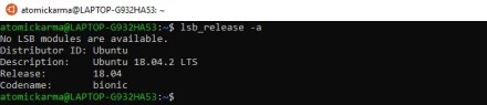 Use the lsb_release command to check your Linux version