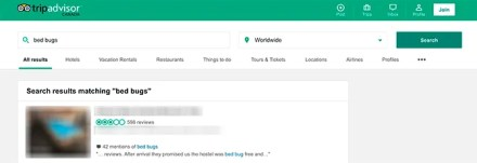 Trip Advisor Search for Bed Bugs
