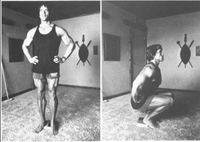 Арнольд Шварценеггер поделился бесплатной тренировкой в вашем доме