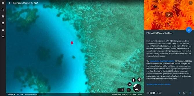 Google Международный год рифа